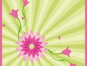 sfondo a raggi con fiori – ray background with flowers