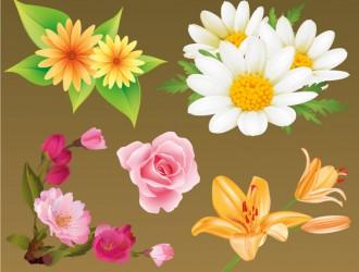 fiori – flowers_7