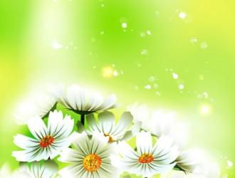 fiori – flowers_8