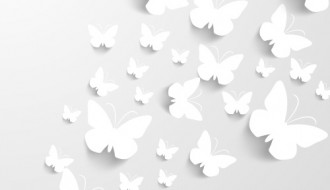 farfalle bianche – butterfly background