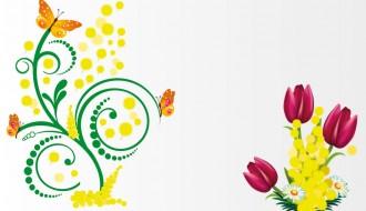 mimose tulipani farfalle – tulips butterflies