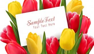 mazzo tulipani – Beautiful tulips flowers