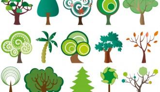 15 alberi – trees