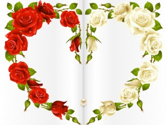 cuore con rose rosse e bianche – red and white rose heart
