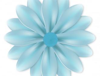 fiore azzurro – blue flower