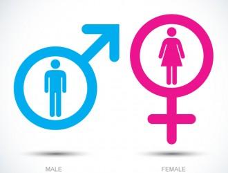 icone maschio, femmina – male, female icons