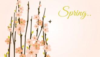 rami fioriti primavera – spring flowering branches